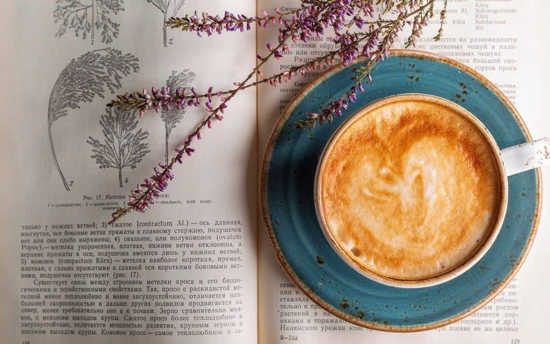 Quels critères pour choisir un café moulu ?